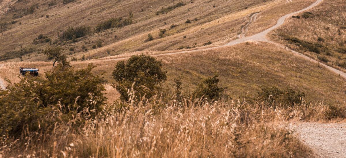 2000-testata-ambiente9