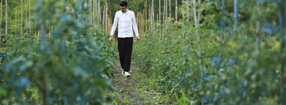 950x633azienda-agricola